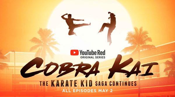Cobra Kai season 1 poster