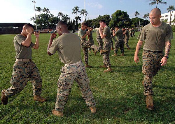 MCMAP Marines martial arts tan belt training in Hawaii